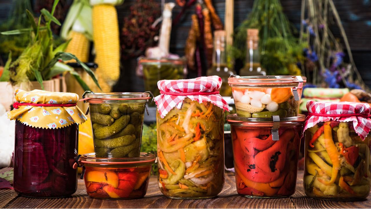 Creating Wild Probiotics