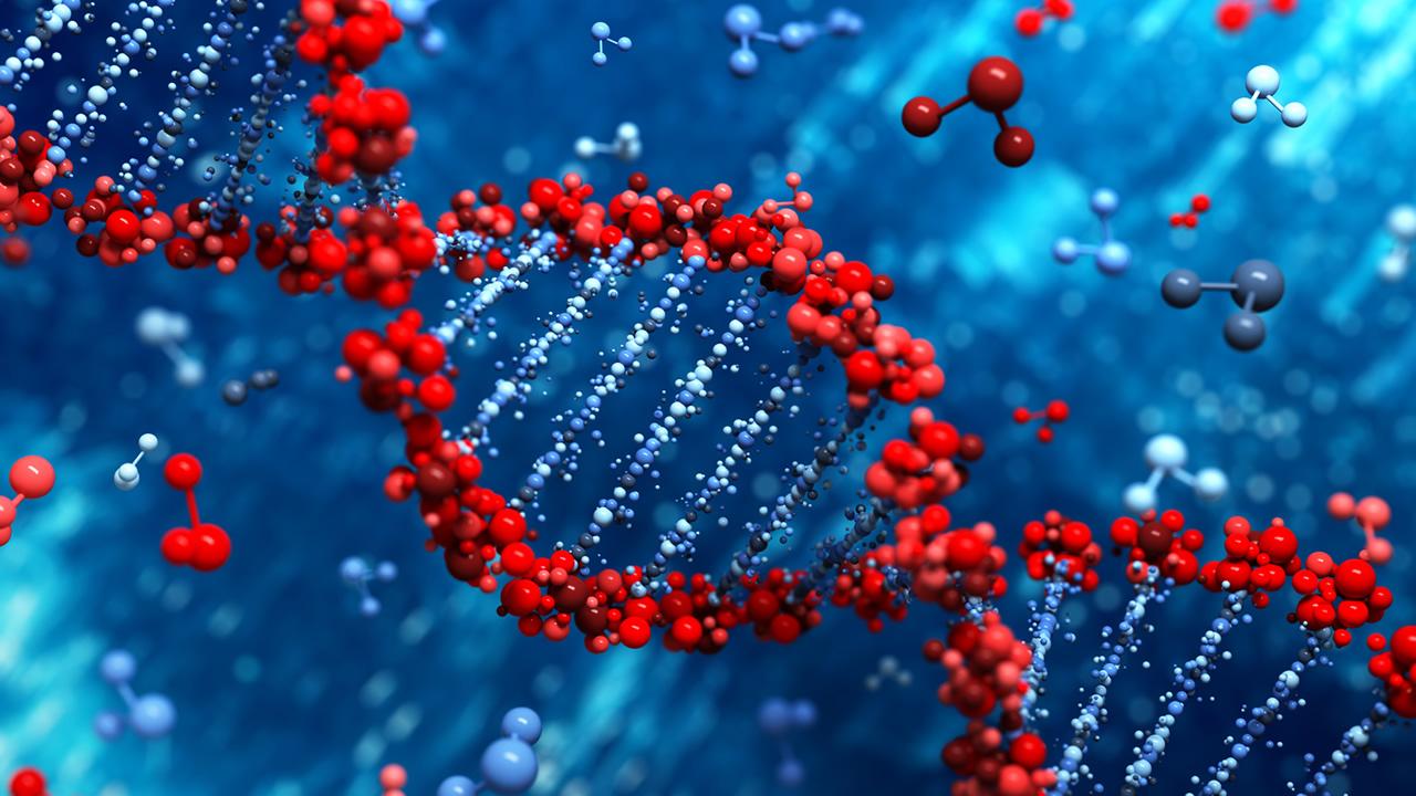 Fundamentals of Biomolecules