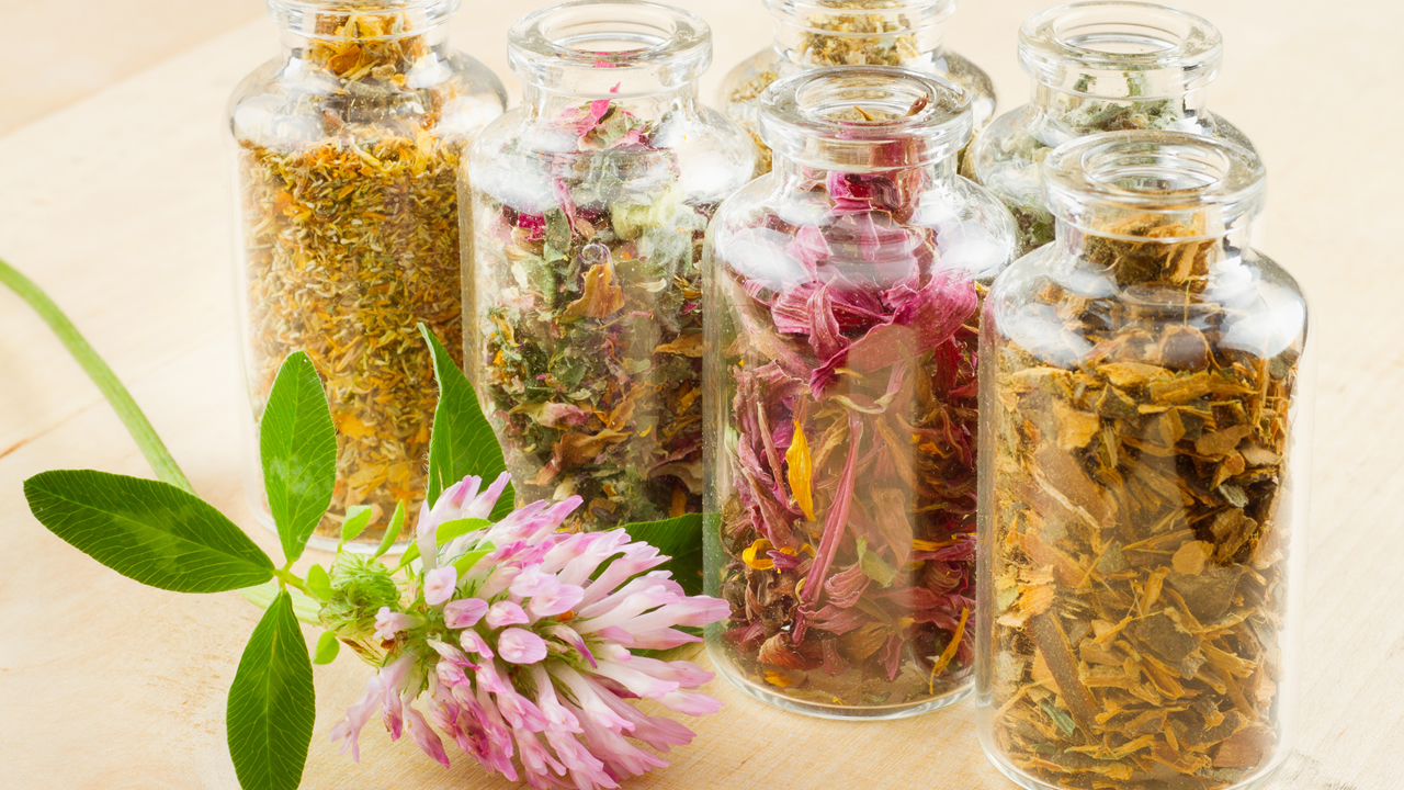 Plant Material in Spice Jars