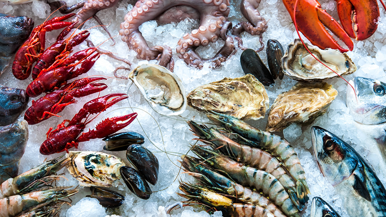 Segment Two - Seafood HACCP (AFDO Accredited)