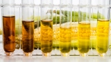 Biofuels: Analyzing Cellulase