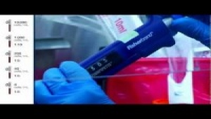 Serial Dilution for Cell Cloning
