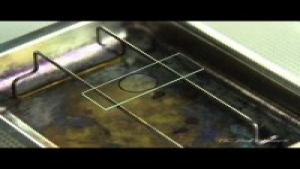 Applying a Simple Stain to a Bacterial Culture