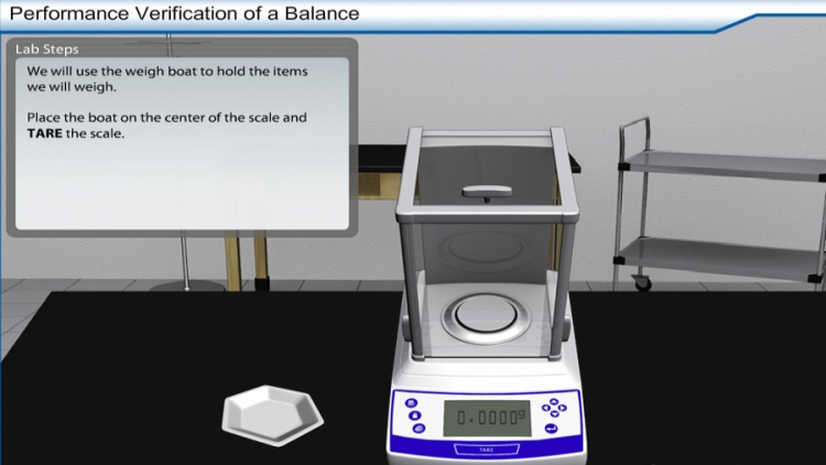 Performance Verification of a Balance