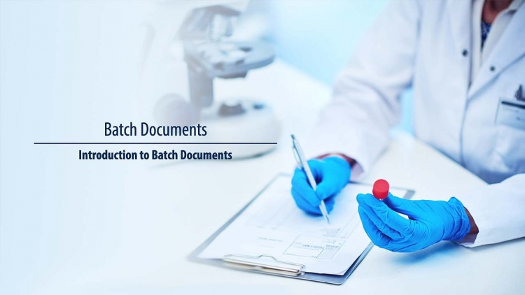 Batch Documents
