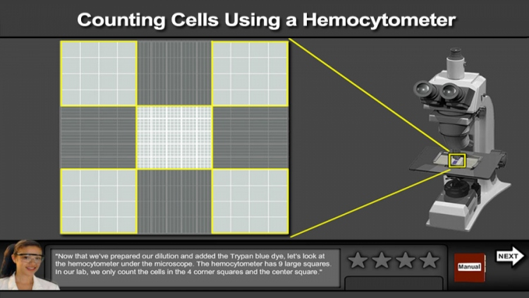 Counting Cells Using a Hemocytometer