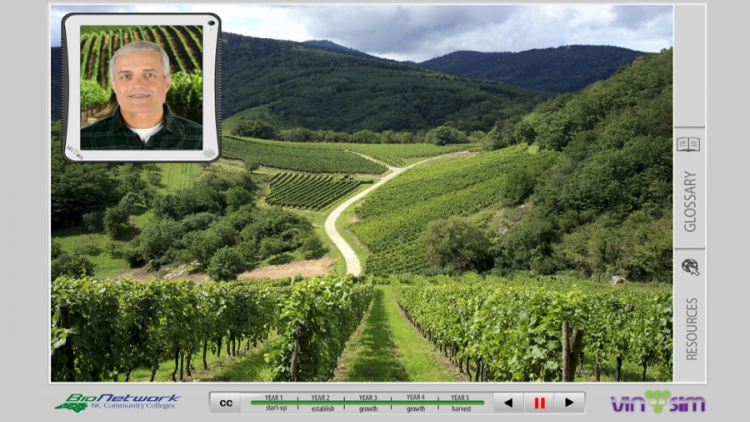 Vin Sim (Vineyard Simulator)